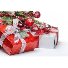 Коледен подарък за любимата...